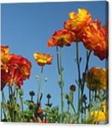 Flower  Dance Canvas Print
