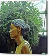 Flower Dome 33 Canvas Print