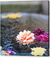 Flower Floats Canvas Print