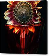 Flower For Foodie #3. Canvas Print