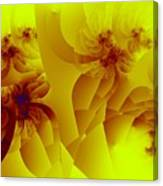 Flower Formations Canvas Print