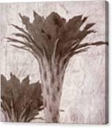Flower-g Canvas Print