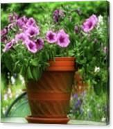 Flower Garden Pot Canvas Print