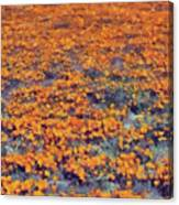 Flower Hill Canvas Print