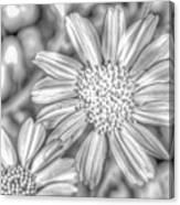 Flower-i Canvas Print