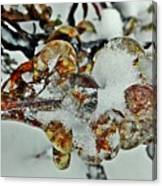 Flower Icicle. Canvas Print