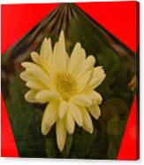 Flower In A Pentagon  Canvas Print
