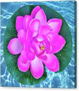 Flower In The Pool Canvas Print