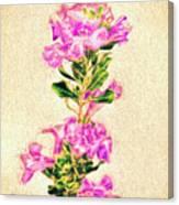 Flower-j Canvas Print