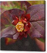 Flower Leaves Canvas Print