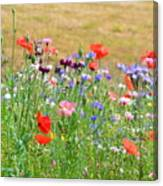 Flower Meadow Canvas Print