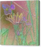 Flower Meadow Line Canvas Print