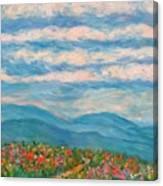 Flower Path To The Blue Ridge Canvas Print