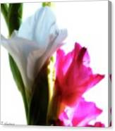 Flower Power 7 Canvas Print