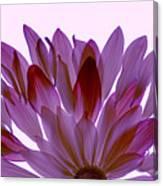 Flower Rise- Lavender Canvas Print