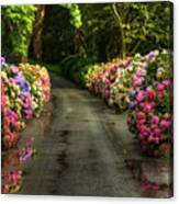 Flower Road Canvas Print