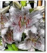 Flower Shop Lillies Canvas Print