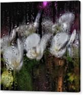 Flower Shop Window 3 Canvas Print