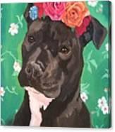 Flower The Pitbull Canvas Print