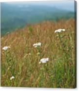 Flower View Of Mountains Canvas Print