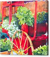 Flower Wagon Canvas Print