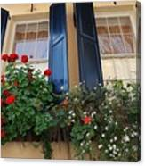 Flower Window In Charleston Sc Canvas Print