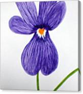 Flower3 Canvas Print