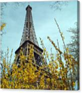 Flowered Eiffel Tower Canvas Print