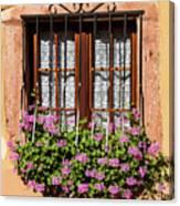 Flowered Window # II Canvas Print