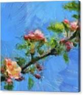 Flowering Apple Branch Canvas Print