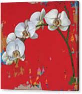 Flowers #14 Canvas Print