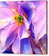 Flowers 31 Canvas Print
