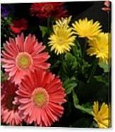 Flowers 728 Canvas Print