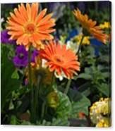 Flowers 730 Canvas Print