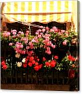 Flowers And Awning In Venice Canvas Print