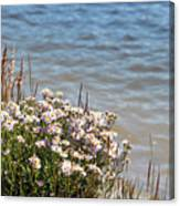 Flowers At The Lake Canvas Print