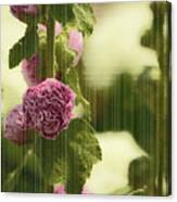 Flowers Behind The Screen Canvas Print