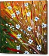 Flowers Field Canvas Print