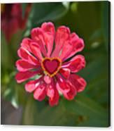 Flower's Heart Canvas Print