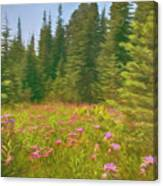 Flowers In A Mountain Glade Canvas Print