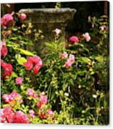 Flowers In Garden In Venice Canvas Print