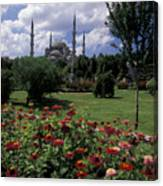 Flowers In Sultanahmet Square Canvas Print