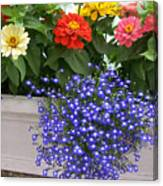 Flowers Of Blue Canvas Print
