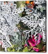 Flowers Of Boca I Canvas Print