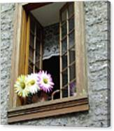 Flowers On The Sill Canvas Print