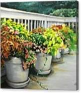 Flowers Pots On Deck Canvas Print