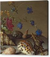 Flowers, Shells And Insects On A Stone Ledge Canvas Print