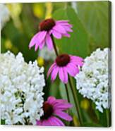 Flowers That Contrast Canvas Print