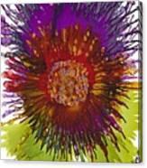 Flowerscape Thistle Canvas Print