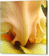 Flowerscape Yellow Iris One Canvas Print